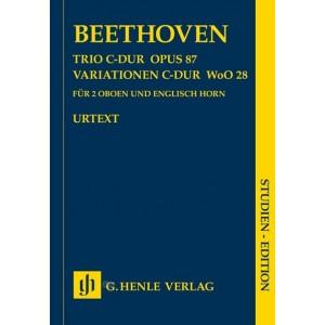 http://www.hoboenzo.nl/shop/1937-thickbox/trio-op-87.jpg