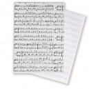 Blanco muziekpapier A5