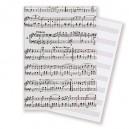 Blanco muziekpapier A4